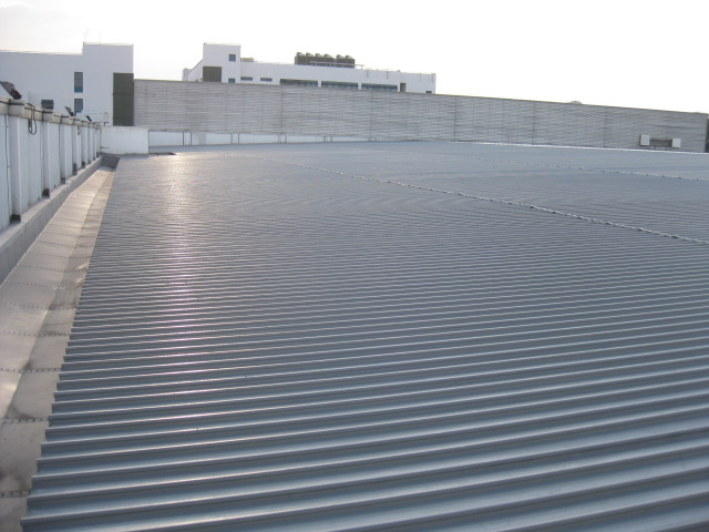 roof leak repair service